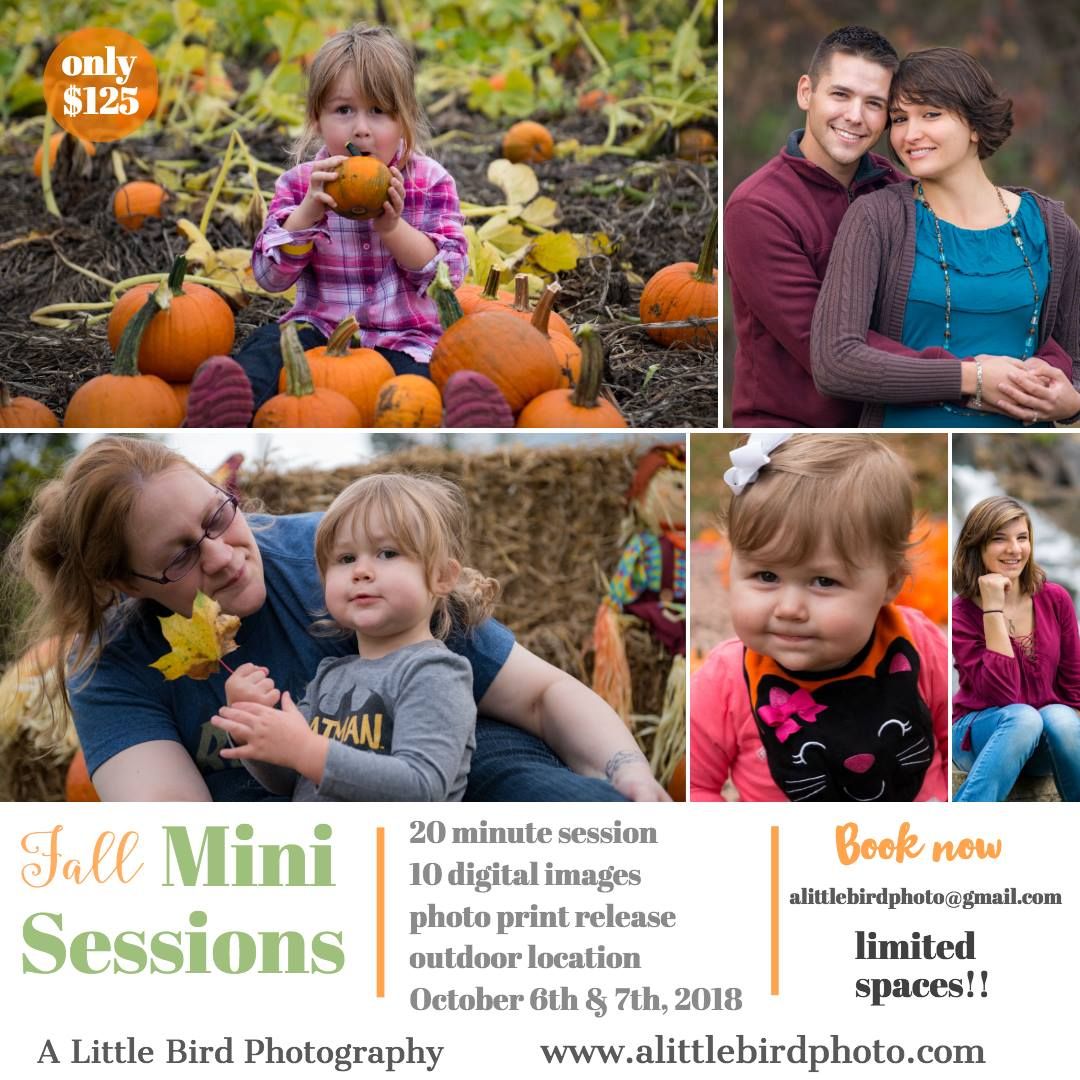 Fall 2018 Mini Sessions